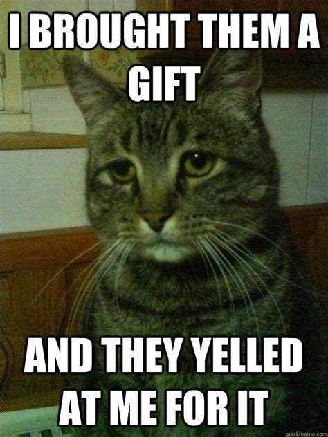 Depressed Cat Meme - depressed cat meme memes