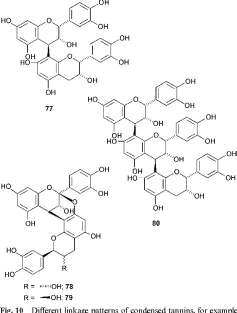 Figure 10 from Tannins: classification and definition