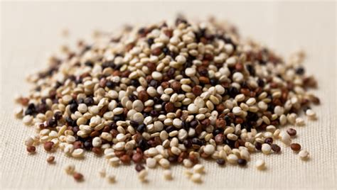 couscous vs quinoa 5 healthier carb choices that few people know about