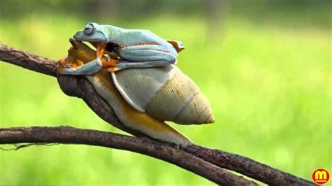 เรื่องของความจริง...: ธรรมชาติสร้างสรรค์สิ่งที่สวยงามเสมอ