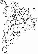 Coloring Grapes Pages Vegetables Raskraska Fruits Vinograd Coloringtop sketch template