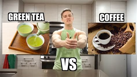 Being evergreen plants, both can grow to large sizes, but are trimmed to maintain. GREEN TEA vs COFFEE - YouTube