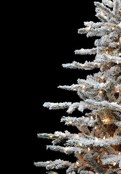heavy flocked christmas tree clearance layered lucerne flocked artificial trees treetime