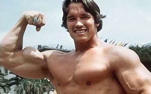 Schwarzenegger's Household Adventures | Fikkle Fame