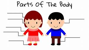 Body Parts Clipart - Cliparts Galleries