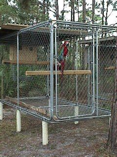 aviaries green winged macaw cages