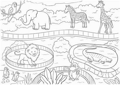 Zoo Coloring Animals Printable Poster