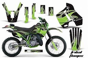 Wiring Diagram 1990 Kawasaki Kdx 200 1990 Kawasaki Kdx 80 Wiring Diagram