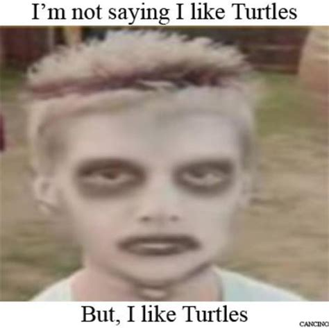 I Like Memes - image 267682 i like turtles know your meme