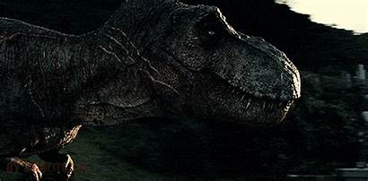 Jurassic Tyrannosaurus Rex Park Dinosaur Gifs Dinosaurs