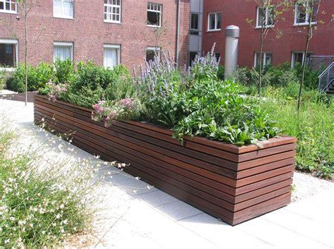 Garten Hochbeet Pflanzen by Modernes Hochbeet Mit Arzneipflanzen Aus Der