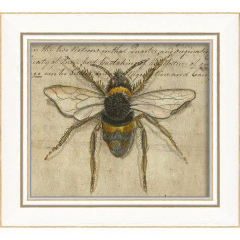 Bumble Bee Framed Graphic Art Artwork Art Framed prints