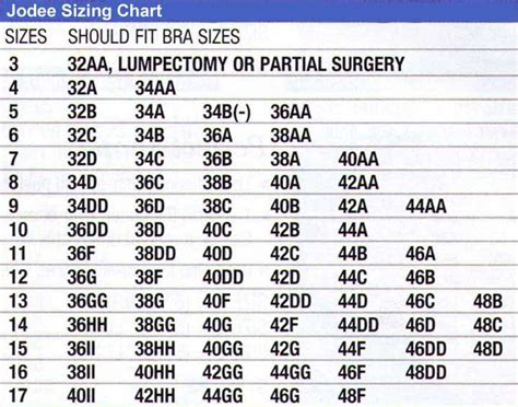 abc breast forms size chart jodee sizing charts