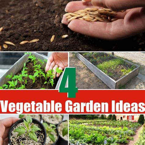 budget friendly vegetable garden ideas diy home things