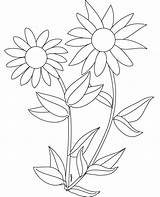 Sunflower Coloring Sunflowers Pages Clipart Printable Colouring Sheets Number Drawing Plants Preschoolers Cliparts Tangled Template Adult Desert Sea Getcoloringpages Adults sketch template