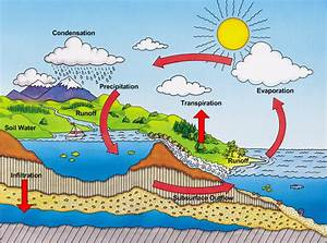 Water Cycle And Catchment Connection