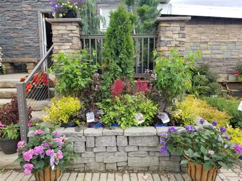 landscaper garden center  greensburg latrobe pa