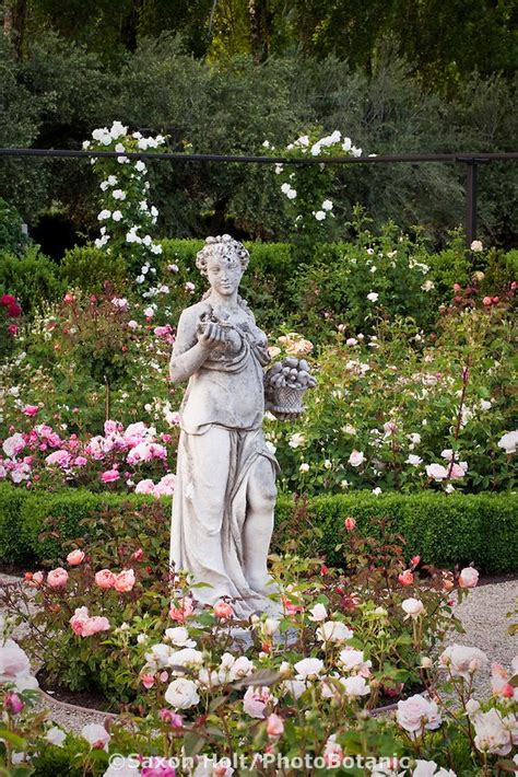 Lade Di Sale Rosa by 662 Best Garden Statues Images On