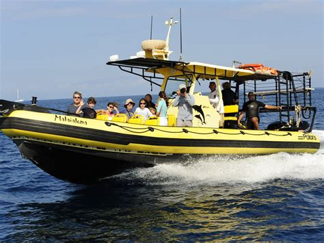 Adventure Boat Tours by Home Adventure X Boat Tours