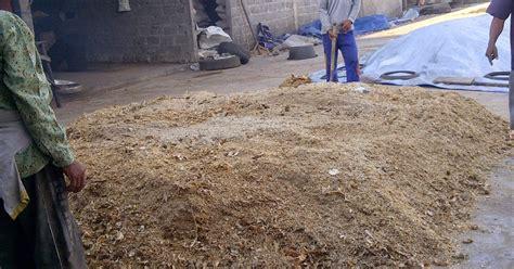 tepung ikan pakan ternak asal muasal tujuan dibuatnya tepung ikan 085 330 289 449