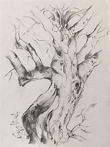 Drawings  U2013 Laurie Shaman