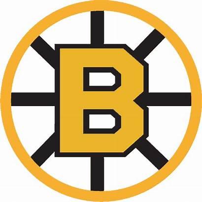 Bruins Boston Hockey Logos Nhl 1966 Team