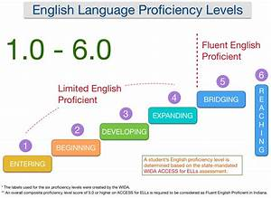 English Language Learning / English Proficiency Levels