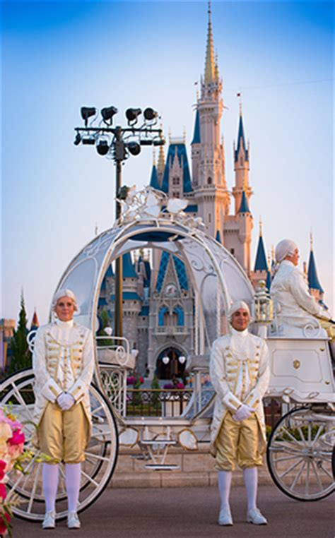 disney introduces magic kingdom weddings  east plaza gardens