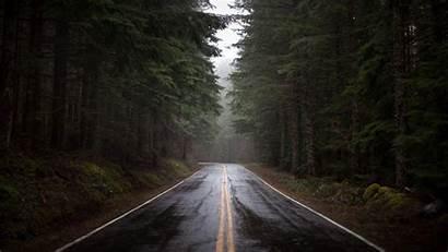 Forest Rain Wallpapers Rainy 1080 Raining Nadyn