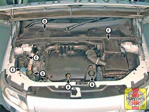 2006 Range Rover Light Cover Land Rover Freelander 2006 2014 2 2 Td4 Fluid Level