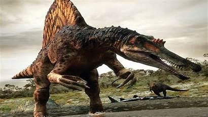 Dinosaur Spinosaurus Dinosaurs Wallpapers Desktop Resolution Wallpapers13