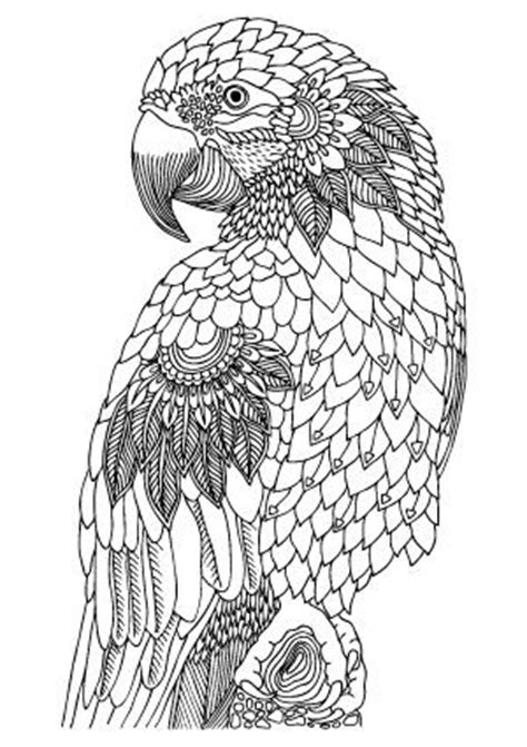 printable colouring  pages  adults animals
