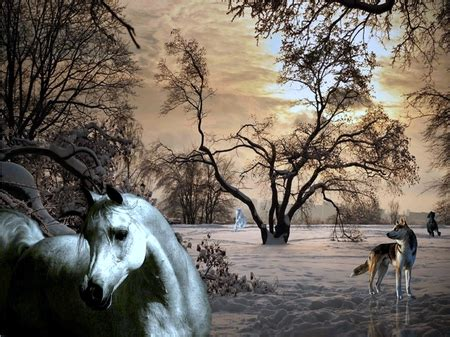 horses   cg abstract background wallpapers