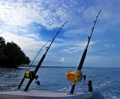 catching  giant fish images  pinterest deep