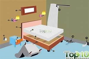 can bed bugs live in only one room conceptstructuresllccom With can bed bugs only be in one room