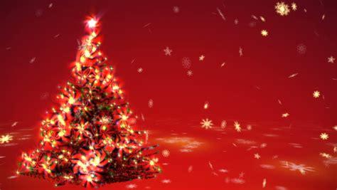 growing christmas tree  surrealistic stock footage
