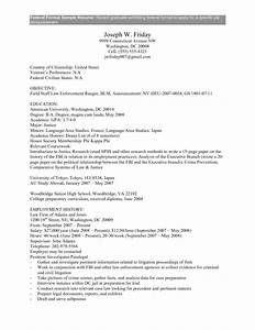 Examples Resumes Professional Federal Resume Format