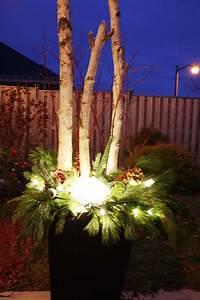 Christmas, Urn, With, Birch