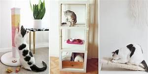 Arbre A Chat En Palette : 5 diy pour fabriquer un arbre chat marie claire ~ Melissatoandfro.com Idées de Décoration