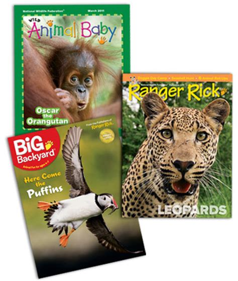 my big backyard magazine subscription ranger rick my big backyard or wild animal baby magazine subscription for 10 stretching a