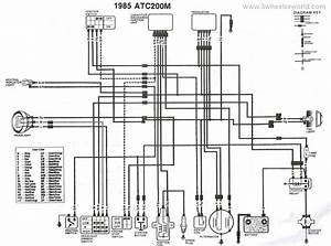 1998 Honda Trx300ex Wiring Diagram