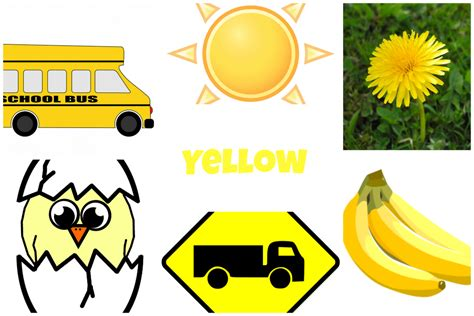 Letter Y Is For Yellow Preschool Lesson
