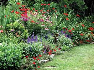 Photos hgtv for Perennial flower garden