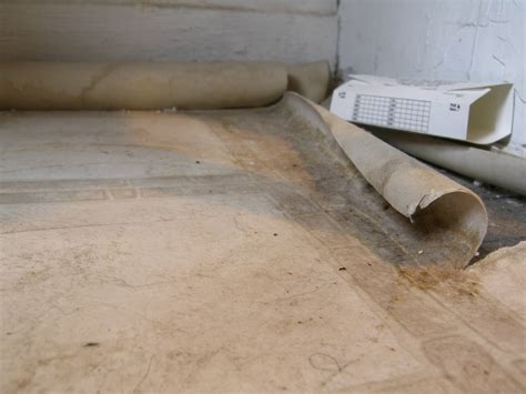 linoleum flooring with asbestos sealing how can i seal the edges of a linoleum floor that possibly contains asbestos home
