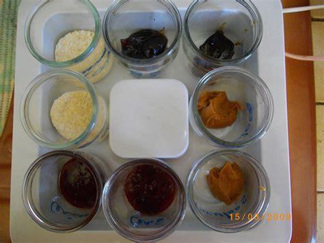 recettes yaourt maison avec yaourtiere