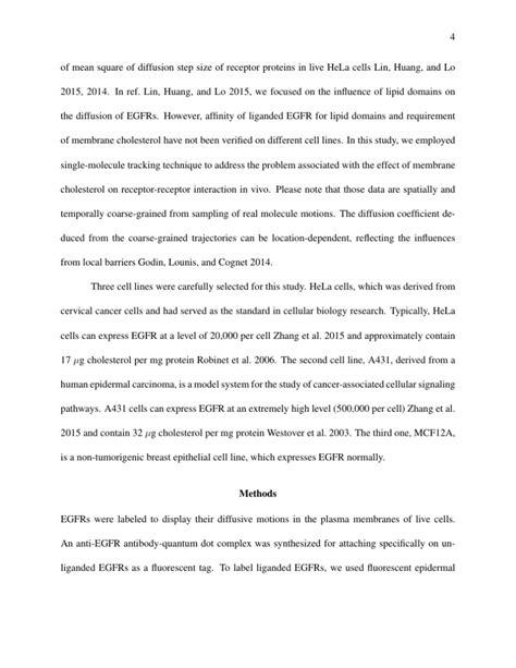 interview essay examples  format   template paper mersn proforum