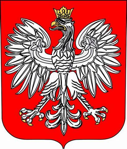 Poland Arms Coat Emblem National Vector Polish