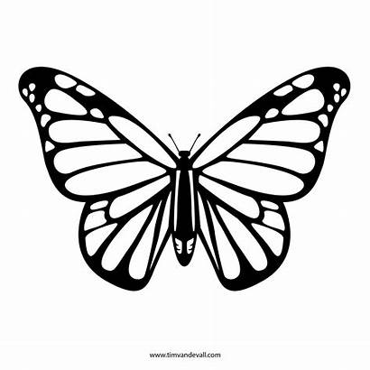 Butterfly Outline Printable Drawing Stencil Monarch Template