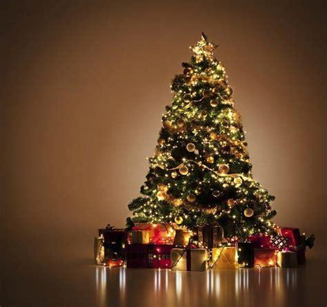cu 225 l es el significado de los 193 rboles de navidad sobrehistoria com