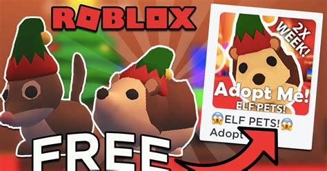 Codigos de ultimate ninja marzo 2021; How To Get A Free Frost Dragon In Adopt Me 2020 - Fruct Blog